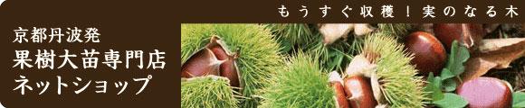減農薬農法
